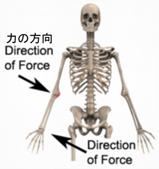 valgus forceのコピー.jpg